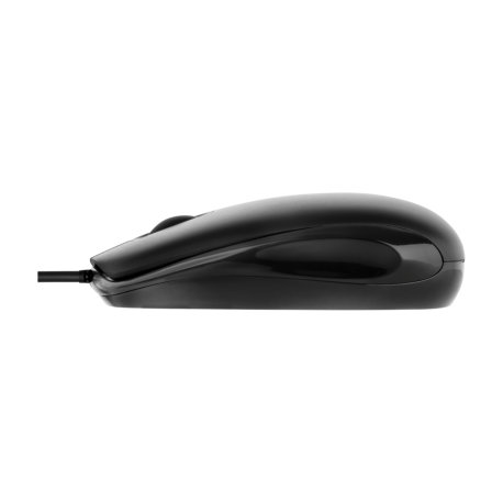Mouse Acme MS10 - 3